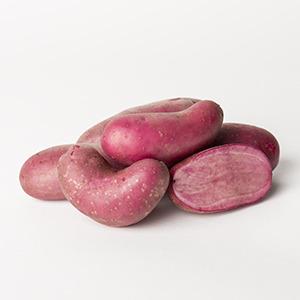 VERSSHOP - Rote Emma aardappelen nieuw_IMG_1781 300x300[1]